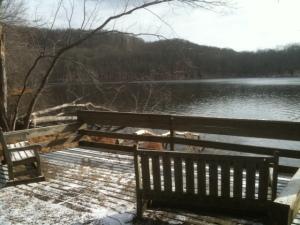 winter at radnor lake